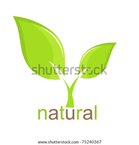 Green leaf natural icon. Vector illustration - stock vector