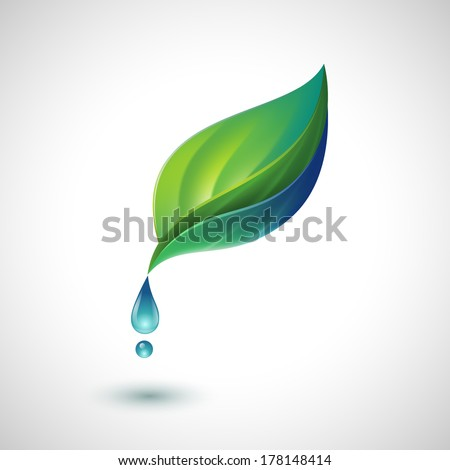 Green leaf with water drop, eps10 vector - stock vector