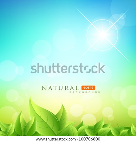 Green leafs natural on blue sky background, vector illustration - stock vector