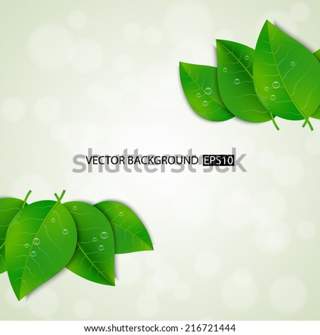Green leaves background. EPS10 vector