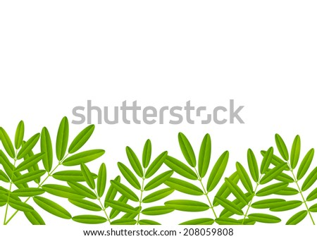 Green leaves border for Your design