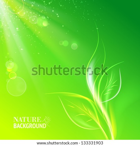 Green leaves, bright sun. Vector illustration, contains transparencies, gradients and effects.