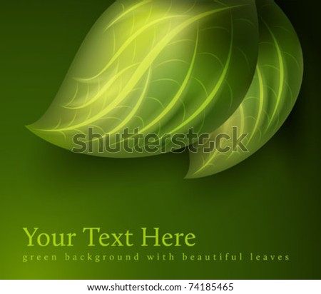green leaves decoration