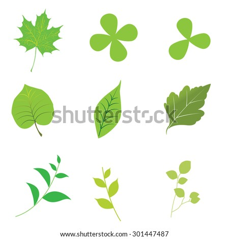 green leaves design elements icon set vector illustration.
