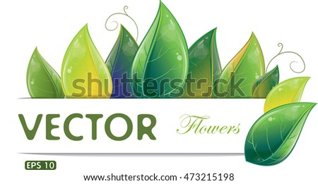 Green leaves design isolated on white, vector illustration, eps-10