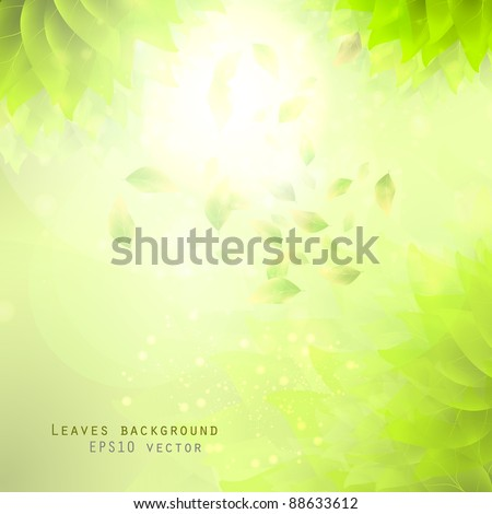 green leaves, eco background eps10 - stock vector