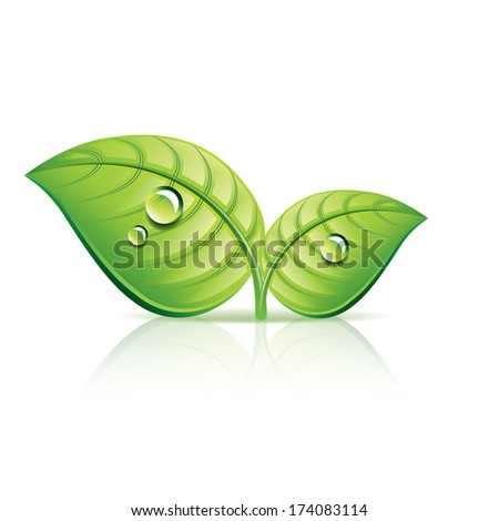 Green leaves ecology icon photo-realistic vector illustration - stock vector