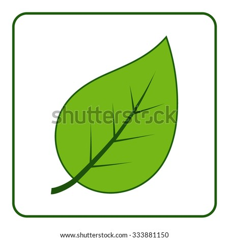 Green leaves icon. Concept Save the Planet. Care of Earth. Ecology design elements. Eco symbol with leaf isolated on white background. Flat style. Organic Bio. Image is a vector illustration - stock vector
