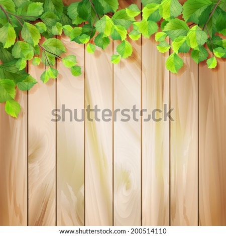 Green leaves on a wood texture. Vector season background with tree branches, sunlight coming through the leaves, drop shadow on a wall, wooden textured fence - stock vector