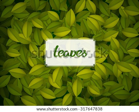 Green leaves texture. - stock vector