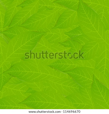 Green leaves vector background - stock vector
