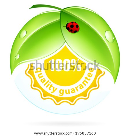 Green Leaves with Ladybird, 100% quality guarantee - stock vector