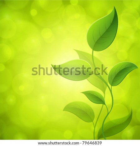Green leaves with light. Vector background Eps 10.