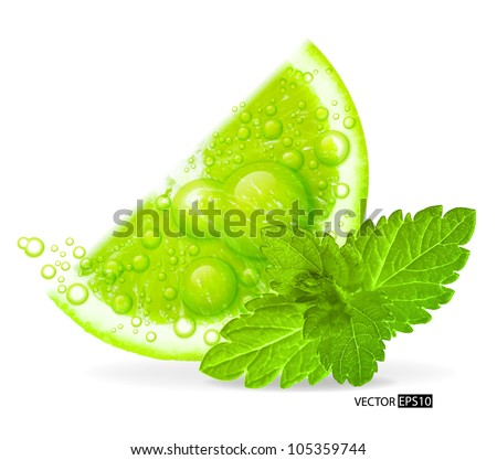 Green lime with water splash and mint leaf isolated on white background. Vector illustration. - stock vector