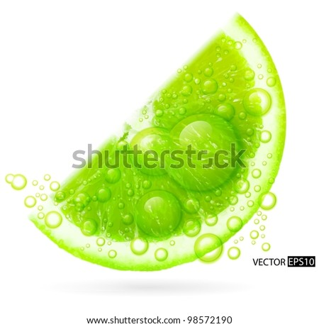 Green lime with water splash isolated on white background. Vector illustration. - stock vector