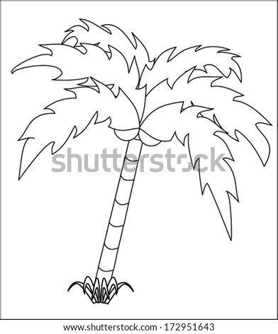 Green palm tree with coconut nuts - outline. isolated on white background, eps10, vector art image illustration