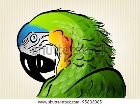 green parrot on the background - stock vector