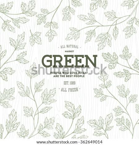 Green parsley design template. Organic background. Vector illustration - stock vector
