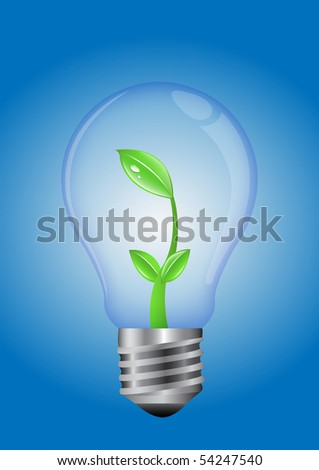 Green Plant Inside a Light