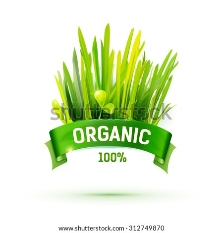 Green ribbon with Organic emblem and grass illustration. Creative promotional vector banner. Eco friendly food logo design. Farm product label. Realistic grass. Natural grass icon. Organic logo - stock vector