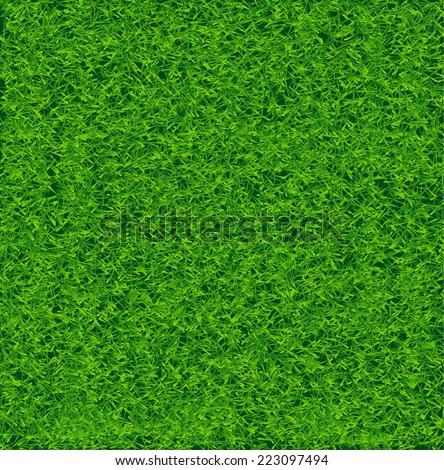 Grass Soccer Field Vector Green Soccer Grass Field