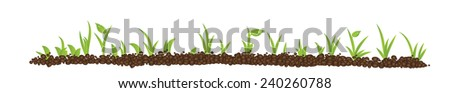 green spring sprout in the soil on white background,horizontal, vector - stock vector