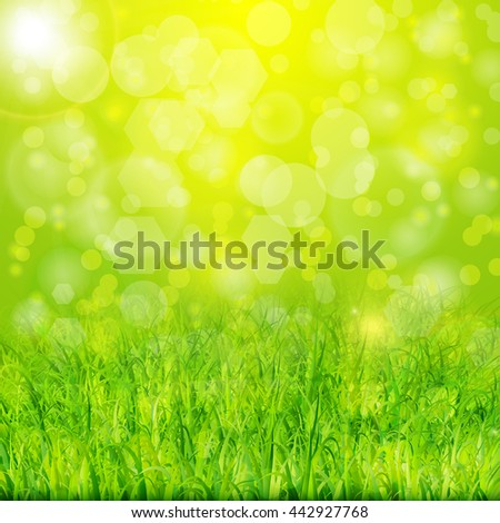 Green summer background with grass