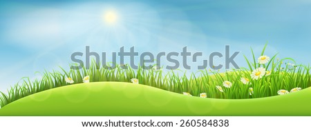 Green summer landscape, vector illustration - stock vector
