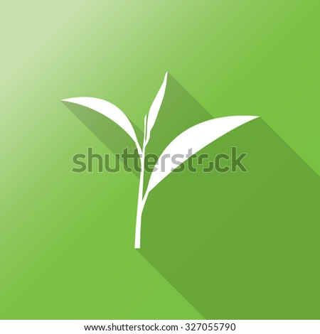 Green tea symbols and icons with long shadow.