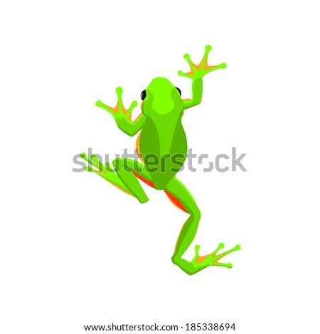 Jump Frog Stock Photos, Images, & Pictures | Shutterstock