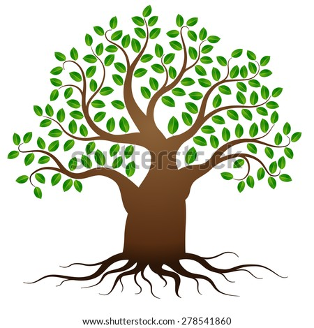 green tree roots on white background stock vector hd royalty free rh shutterstock com tree with roots clip art free tree with roots clip art free