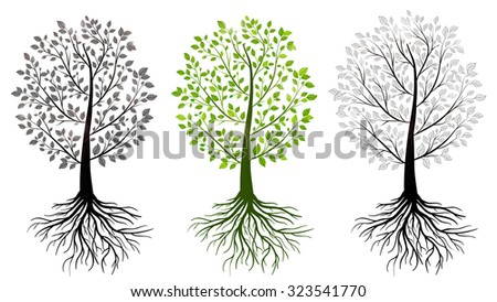 green trees isolated - stock vector