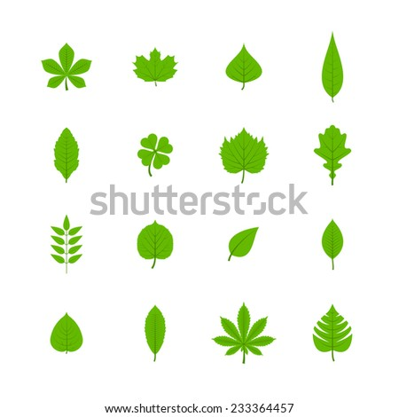 Green trees leaves flat icons set of oak aspen linden maple chestnut clover plants isolated vector illustration