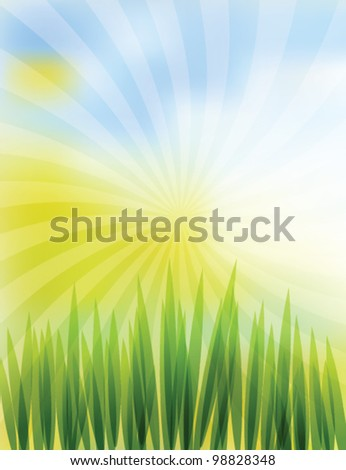 Green Vector Grass with Spiral Ray Background - stock vector