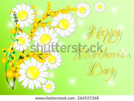 Greeting card with bouquet with white chamoiles and branches of yellow mimosa for Mother's day or Women's day in March 8 on green background. Vector illustration