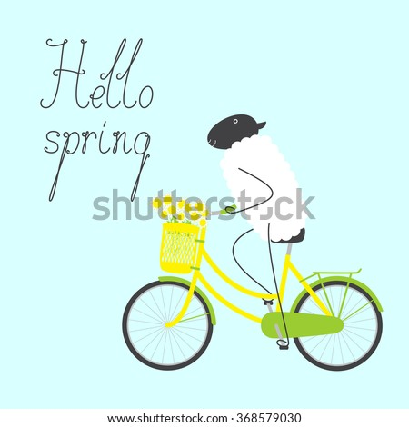 Greeting card with cute sheep riding bicycle with yellow colored female frame, bouquet of chamomiles in pannier on handlebar, dark grey saddle, rear rack and calligraphic lettering hello spring