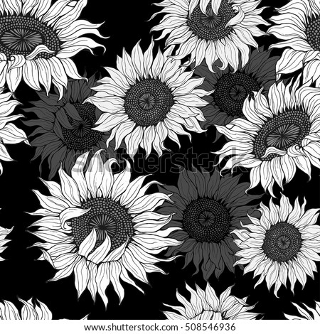 Grey And White Sunflowers On A Black Background Vector