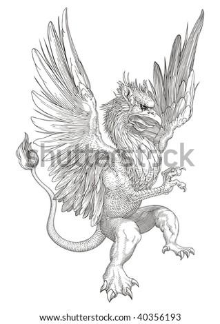 Griffin vector - stock vector