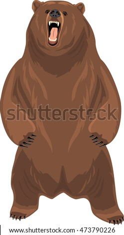 stock-vector-grizzly-bear-vector-4737902