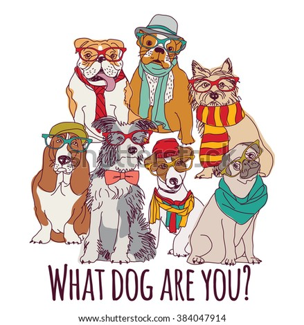 Group dog fashion hipster isolated on white.  Color vector illustration. EPS8