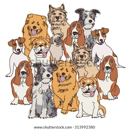 Group dogs color isolate on white. Big group of different dogs separated on white background. Color vector illustration. EPS 8. - stock vector