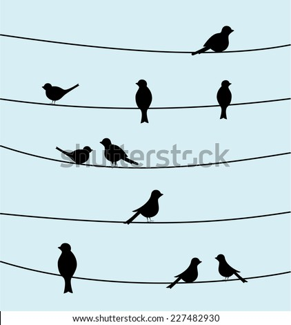 Group of birds on wires. Black color silhouette bird design, simple vector art image illustration on sky blue background. animal concept wallpaper, vintage style - stock vector