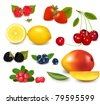 Group of cranberries, blueberries, cherries, raspberries and exotic fruit. Photo-realistic vector illustration. - stock vector