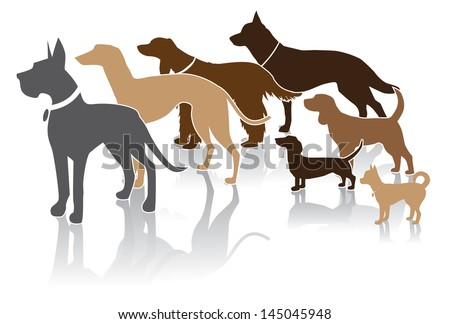 Group of dogs looks at your message. EPS 10 vector, grouped for easy editing. No open shape or paths. - stock vector