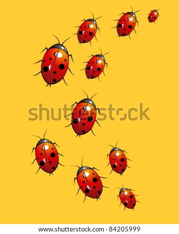 Group of  ladybug - stock vector