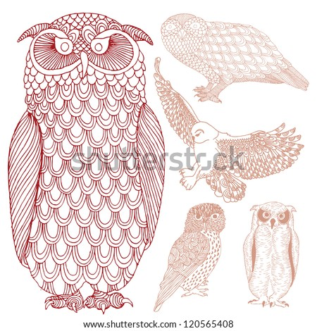 Group of owls - stock vector