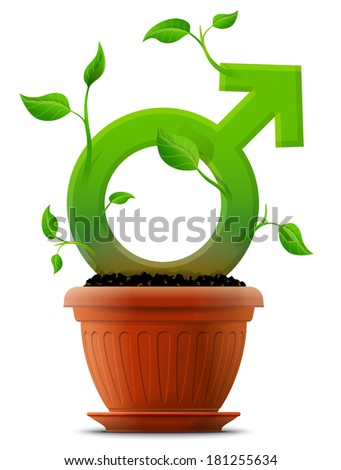 Growing male symbol like plant with leaves in flower pot. Plant in shape of man sign. Vector image about men's biology and health, male psychology (father, son), sex differences, gender role, etc - stock vector