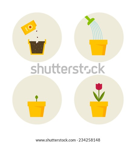 Growing of a plant scheme in symbols. - stock vector