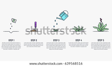 Growing plant stages seeds watering can stock vector 639568516 growing plant stages seeds watering can sprout and grown plant house plant ccuart Choice Image