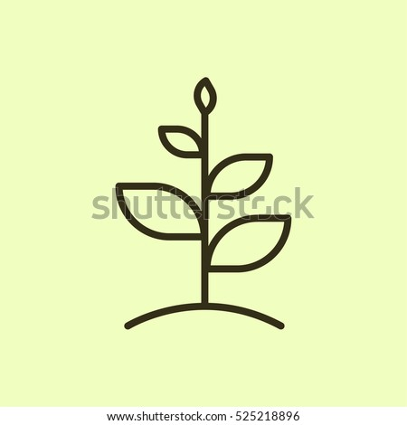 Growth Plant Minimalistic Flat Line Outline Stock Vector 2018
